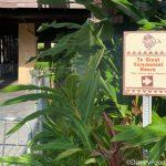 PHOTOS: Disney's Polynesian Resort Begins Massive Entryway Refurb with Cranes and Blocked Entrances