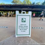 VIDEO: Disney World's Overhead Face Mask Announcement Updated to Include Noncompliance Protocols