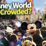 DFB Video: Is Disney World Getting More Crowded and What Does It Mean for YOU?