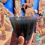 VIDEO: Check Out the EPIC Smoke Effect on This Margarita in Disney World!