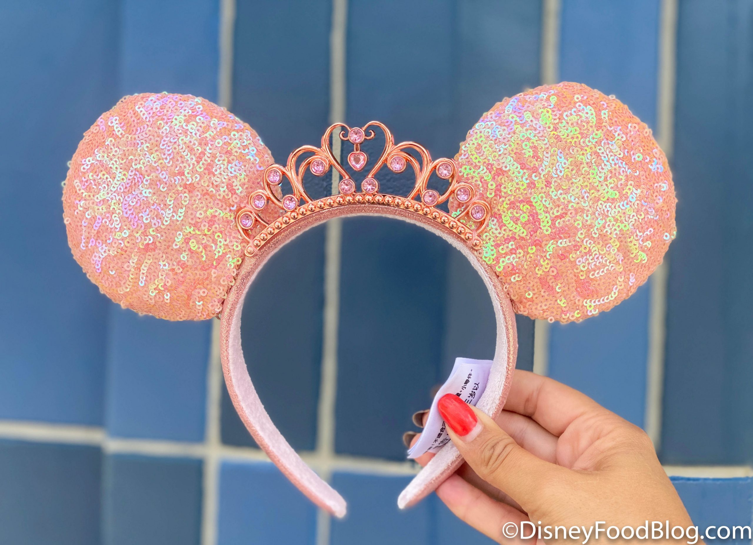 Pink and Blue Mickey Ears