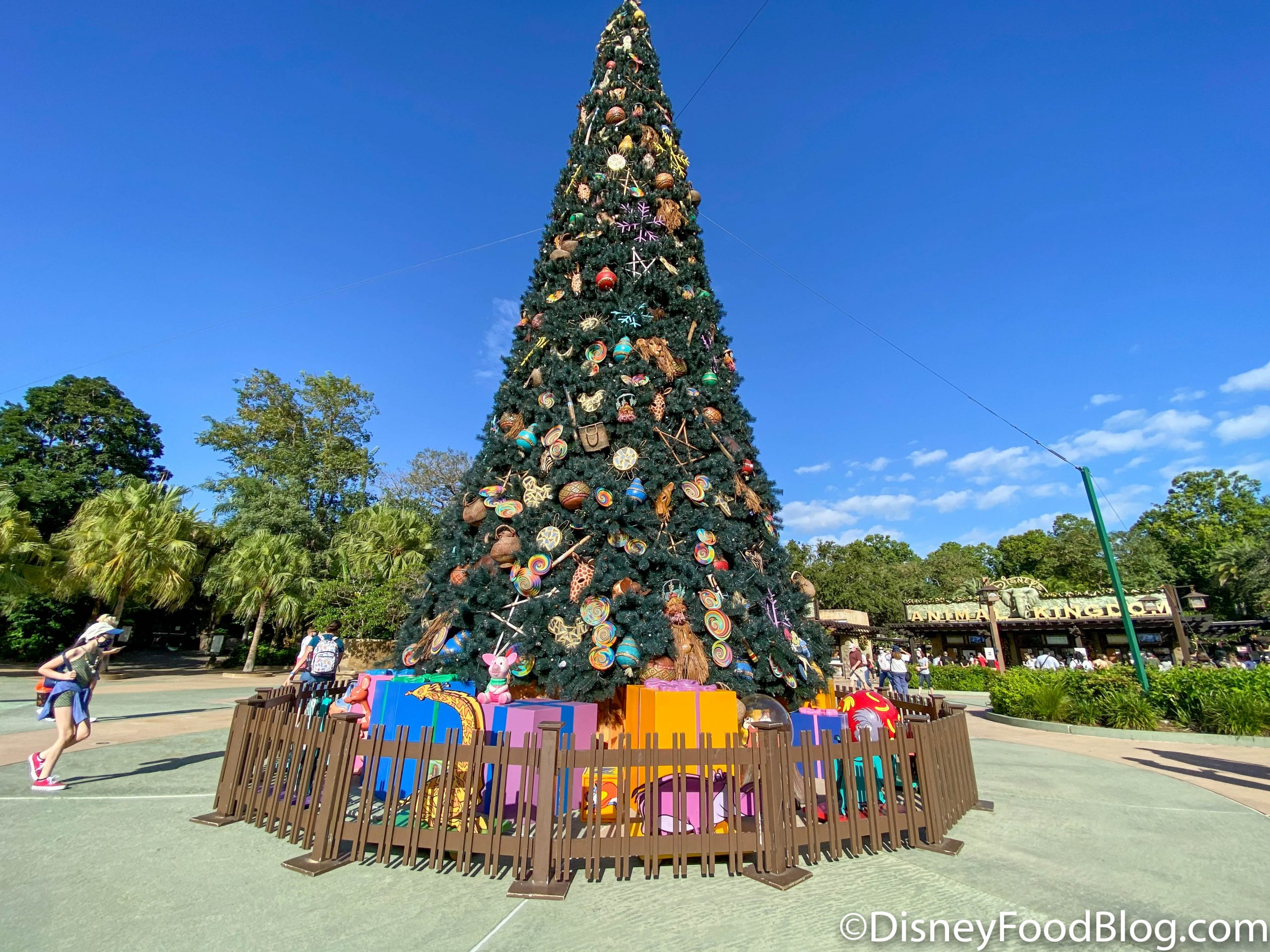 Animal Kingdom Christmas 2020 FULL REVIEW: A Spicy and Stunning Cupcake Is Back EARLY in Disney