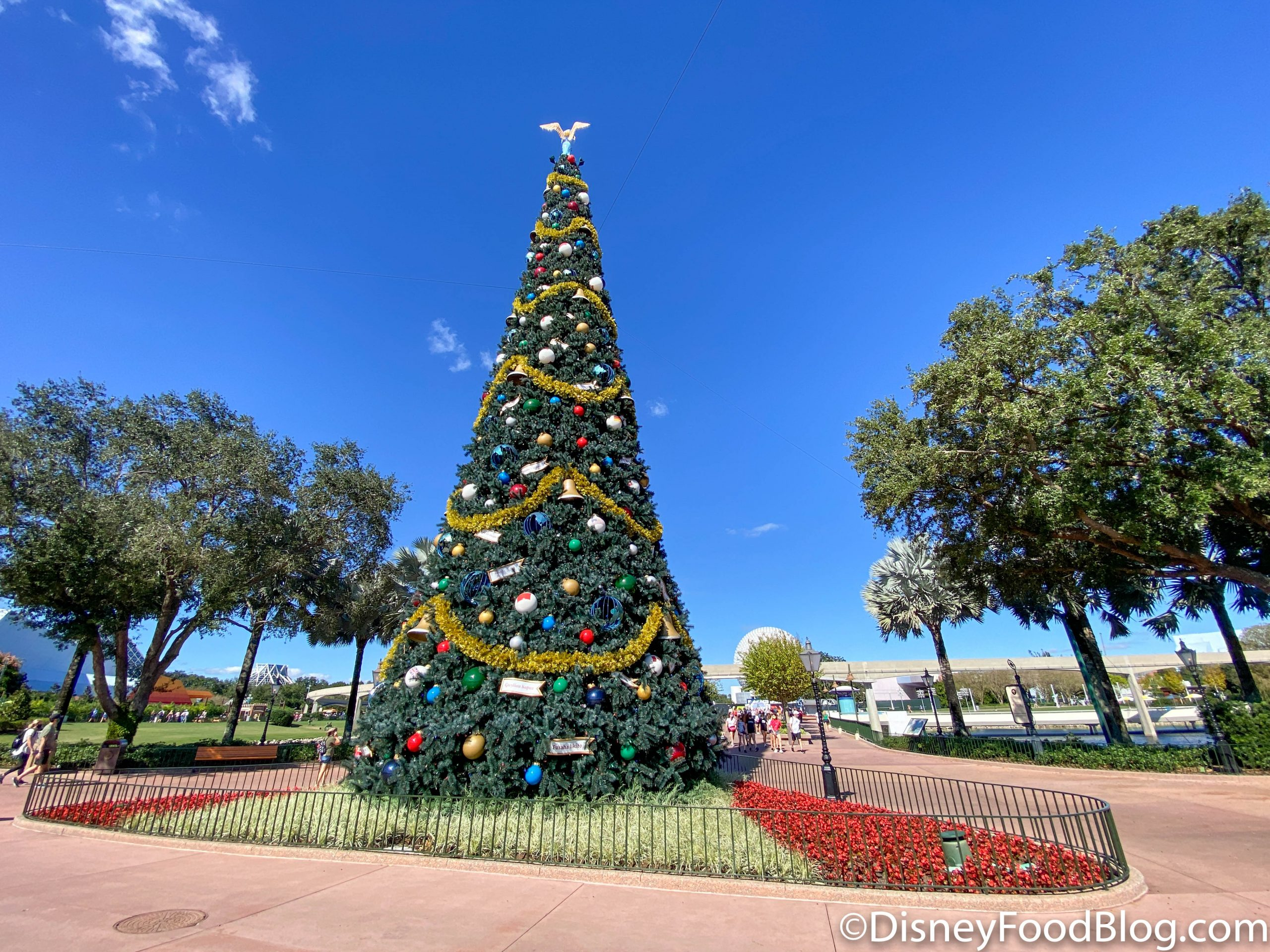 Video Watch As Disney World Installs The Iconic Park Christmas Trees The Disney Food Blog