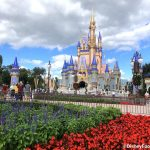 What's Park Hopping Like in Disney World Now? Here's EVERYTHING You Need to Know.
