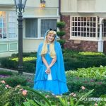 An Abstract Alice in Wonderland Collection Has Arrived in Disney World