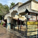 A Disney World Restaurant is Going to Weekends-Only SOON at Animal Kingdom!