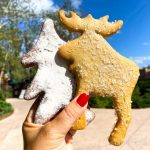 REVIEW: Spice Up Your Life With These Two Holiday Cookies at Disney World!