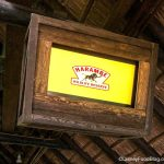 PHOTOS AND VIDEO! There's a NEW Queue Video for Kilimanjaro Safaris at Disney's Animal Kingdom!