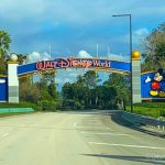 Come With Us! 21 Photos and Videos From Disney World TODAY!