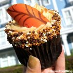 Review! Is This New Fall Cupcake in Disney World Worth Falling For?