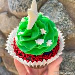 Review! Does This Cupcake at Disney California Adventure Impress Chocolate-Lovers?