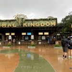 What's New in Animal Kingdom: A Missing Animatronic, a Restaurant Reopening, and More!