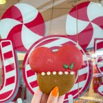 Review: This Gingerbread Cookie is Adorable! But Is It Tasty Too?