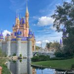 What's New at Magic Kingdom: Thanksgiving Crowds, Expensive Pins, and Attraction Refurbs!