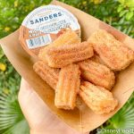 Review! Mini Churros Get Another Holiday Makeover in Disney World