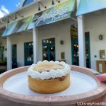 REVIEW: This Apple Tart REALLY Impressed Us in Disney World Today