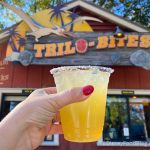 REVIEW: Cocktails Everywhere Are Jealous of This GOLDEN Margarita in Disney World!