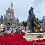 20 Photos And Videos From Our Day At Magic Kingdom!
