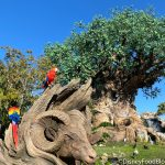 Disney World Extends Park Hours for the First Full Week in January