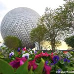 What's New at EPCOT: Construction Updates, Merchandise Mobile Checkout, and Newsworthy Pins!