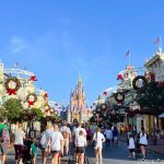 PHOTOS and VIDEOS! New Year's Day Crowds and Wait Times are NOT What We Expected in Disney World!