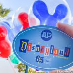 PICS: FREE Annual Passholder Magnet Now Available With Any Purchase at Disneyland Resort