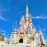 Disney World Park Hours and Park Pass Availability For the Week of January 17th