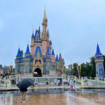 22 Photos & Videos From Our Rainy Day at Disney World!