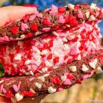 Review: If You LOVE Sprinkles, We Found the Disney World Treat For You