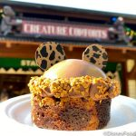 Review! Disney's Cheetah Brownie is NOT What it Looks Like on the Outside!