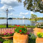 Just Add Water to Use EPCOT's Mind-BLOWING Souvenir