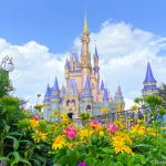 The 3 Most Unexpected Things That Happened in Disney World Last Month