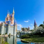 SAVE on Your Next Disney World Vacation! We Have ALL the Current Disney World Hotel Deals and Discounts!