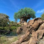 What's New at Animal Kingdom: An Ice Cream HACK, Confetti Princess Mugs, and More!