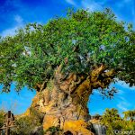 Our Day in Animal Kingdom: A Returning Fan-Favorite Snack and a BIG Plastic Cheese Update