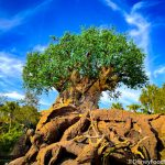Annual Passholders, Disney REALLY Wants You to Visit Animal Kingdom!