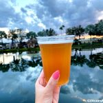 Review: This NEW Beer at Disney World Is the Apple of Our Eye!