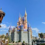 30 PHOTOS and VIDEOS From Our Day in Disney World!