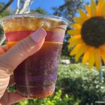 Don't Miss Out on These Cocktails at EPCOT's Flower & Garden Festival!