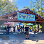Will the Weather Make Disney's Water Park Reopening a Literal 'Blizzard Beach' Tomorrow?