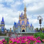 MORE Park Passes Added For This Spring in Disney World