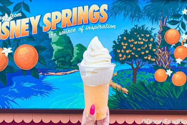 Review: We Braved The Storm For The Newest Snack in Disney World…And It Was Worth It!